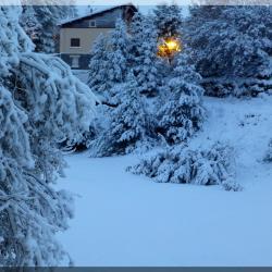 Le terrain du bas sous la neige