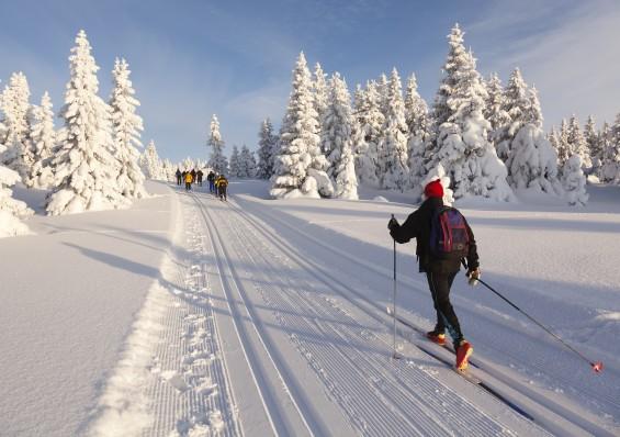 Le ski de Fond à Font-Romeu